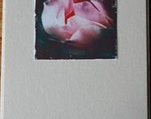 Photo Note Card - Pink Rose 1