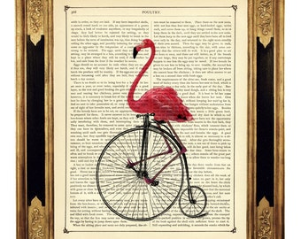 Pink Flamingo riding Bicycle Bike Unicycle Penny Farthing - Vintage Victorian Book Page Art Print Steampunk