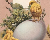 Easter Greetings Embossed Vintage Postcard