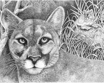 Cougar - 11 x 14 Matted Print