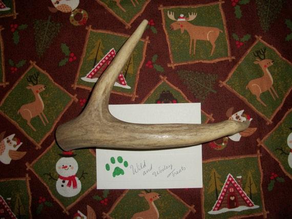 Large Deer Antler Dog Chew (Lot 228)