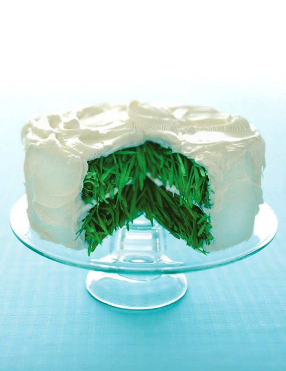 Grass Cake with Vanilla Frosting Fine Art Photograph Photo
