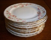 Ten Vintage Pope Gosser China Bread Plates in Florence Pattern