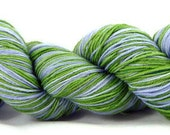 "Sock Yarn Hand Dyed Superwash ""Never Be Seen"""