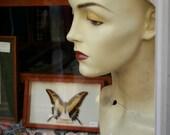 Butterfly Mannequin Head East End London