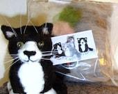 Needle Felt Kitty Kit