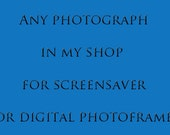 Digital Photograph for Screensaver or Digital Picture Frame