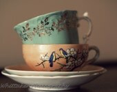 fine art photography golden leaves teacups 8x10