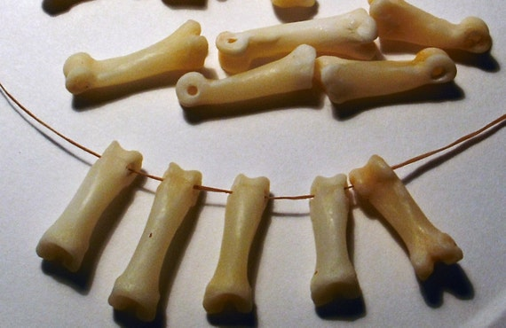 Lot of 10 Genuine Coyote Bones, Clean, Drilled