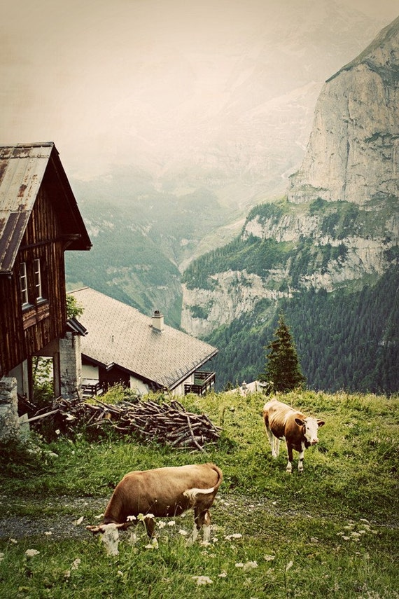 Morning in the Alps - Fine Art Photograph, 30x50 Print