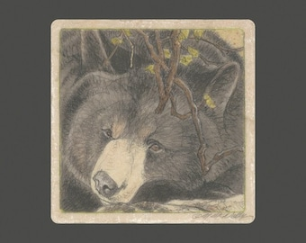 Black Bear Matted/Signed Giclee  Print
