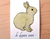 Le Lapin Vert - Mini Archival Print