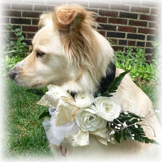 Wedding flowers CORSAGE DOG COLLAR