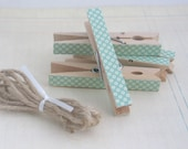 Decorated Clothes Pins/ Clothes Pegs / Clips - FLORAL - Set of 5