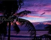 "Paradise Sunset, Digital Fine Art Print, 8""x12"" (Larger Sizes Available)"