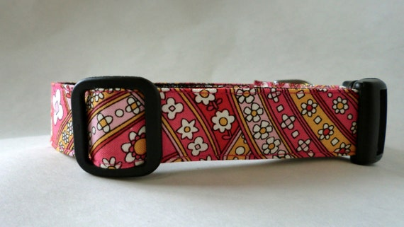Dog Collar - Dog, Martingale or Cat Collar - All Sizes  - Riley