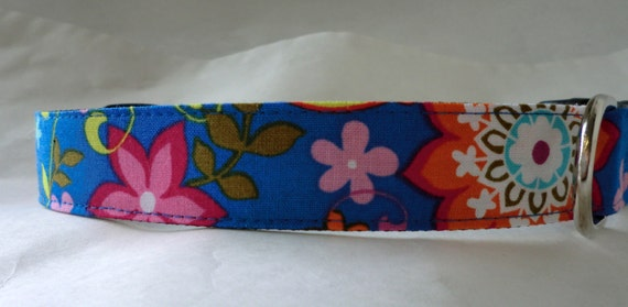 Dog Collar - Dog, Martingale or Cat Collar - All Sizes  - Blue Paisley