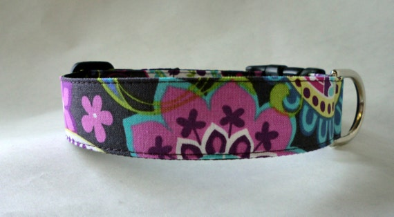 Dog  Collar - Dog, Martingale or Cat Collar - All Sizes - Paisley Spree