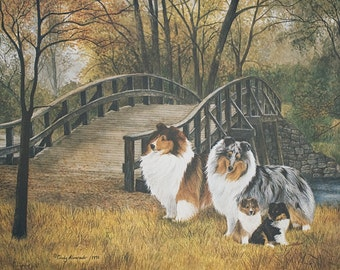 "Shetland Sheepdog lithograph ""Generations"""