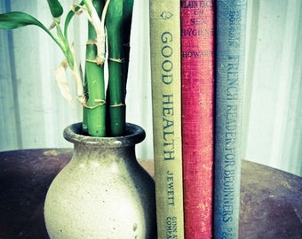 Three Hard Cover Vintage and Antique Books, Olive Green, Burgundy, Blue
