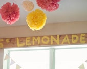 Lemonade Stand Theme Pom Set, 7 tissue paper pom poms, lemonade party, Birthay Party, Children room decor, Wedding decor, summer party