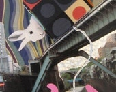 free shipping Rabbit on the Bridge 4x6 original photograph art print