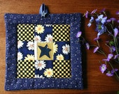 Insulated pot holder: casserole mat/hot pad - hand embroidered, hand appliqued