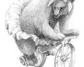 "original pencil drawing ""circus bear"""