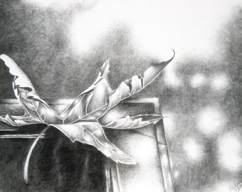 Leaf 8x10 Linited Print from the Original Drawing
