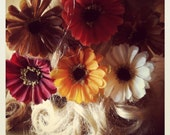 Autumn, Flower, Orange, Yellow, Rust, Red, Cream, Brown, Hair, Pins, Clips-Fall For Me - hooray09