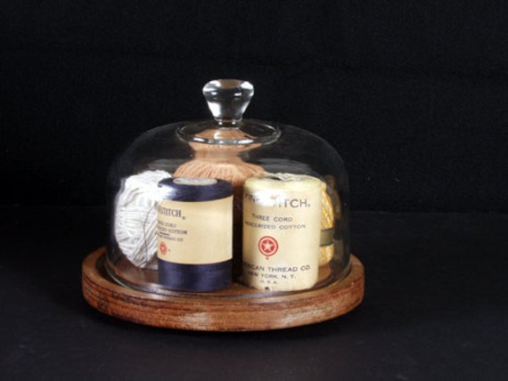 Display Dome with Wooden Base c. 1970s - Retro Cloche - WLV Team