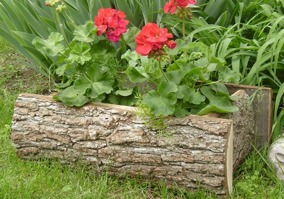 Reserved for Marci/ rustic /planter/ wood/ log skin
