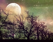 "Night Photo. Tree Photo. ""Magic"" Surreal art. Sky. Dreamy. Colorful. Stars. Moon. Green. Purple. Blue. Pink. Gold. Whimsical"