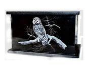 Hand Etched Cremation Urn Black Granite Barred Owl