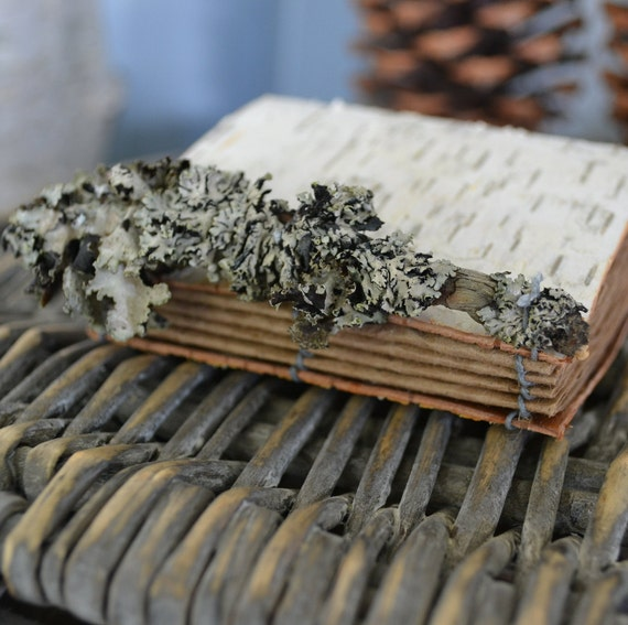 Small Birch Bark Journal with  Recycled Brown Kraft Paper and Lichen Covered Twig