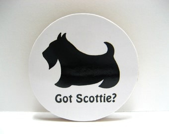 Scottish Terrier - Got Scottie - Funny Wood Magnet