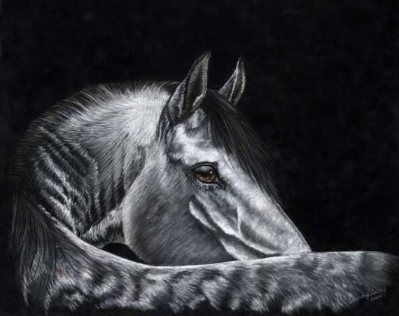 Grayce- a soft pastel drawing from artist Wendy Leedy's horse collection- fine art print, signed
