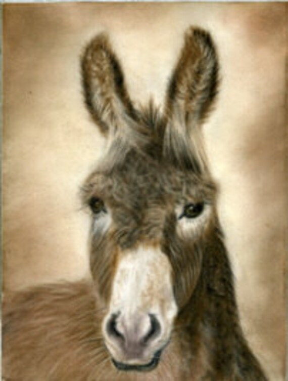 Wilbur Donkey- a pastel drawing from artist Wendy Leedy's donkey collection- fine art print, signed