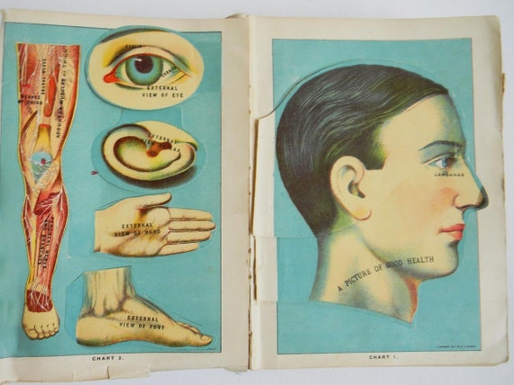 Vintage Medical Book Library of Health 1916