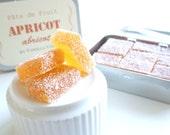 APRICOT Pâte de Fruit 200g by Vanilla Stick