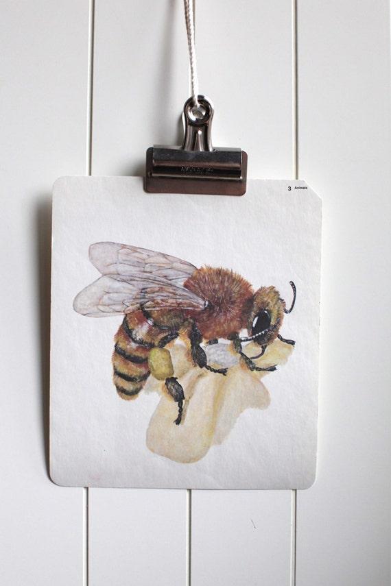 Large vintage language flash card, bee, 1980's