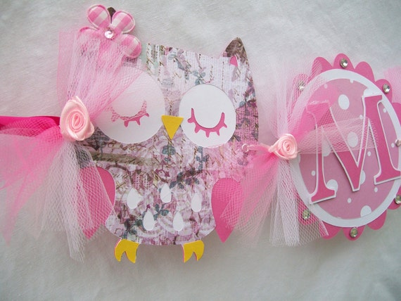 Owl name banner, girl name banner, pink owl name banner - READY TO SHIP - clearance