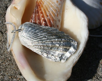 Fine Silver Shell Necklace