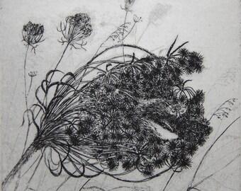 Seednest etching