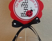 Red and Black Ladybug Centerpiece Stick / Smash Cake Topper