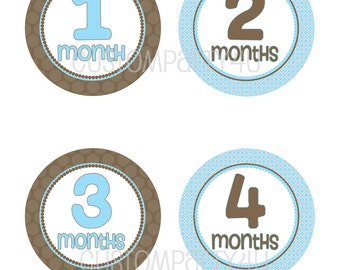 NEW- Monthly Onesie Stickers- Chocolate and Blue