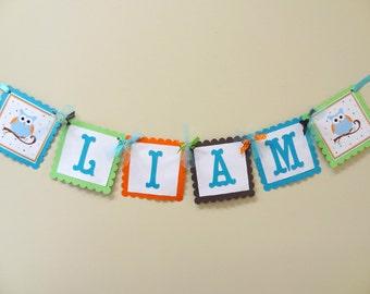 Hip Birthday Owl Name Banner for Boys
