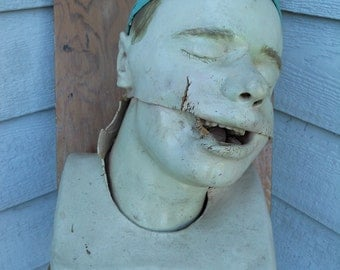 SALE Vintage Medical/Dental Model Oddity Made in Baltimore