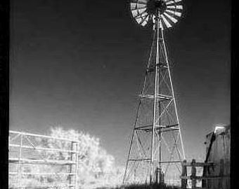 "Texas Windmill Photo Greeting Card, Black and White, 5""x7"", blank"
