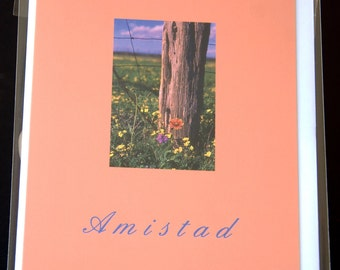 "Texas wildflowers, photo notecard, 4.25""x5.5"", Spanish Text: ""Amistad"""
